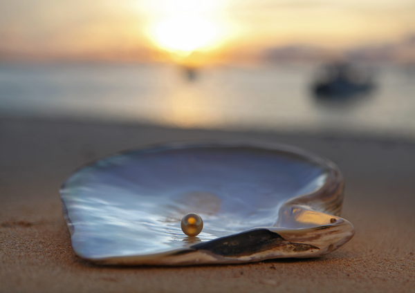 Photo by Harvey Tapan - Golden South Sea Pearl-resize