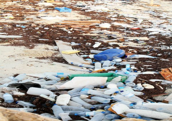 General Use Image - Plastic Bottles on the Beach