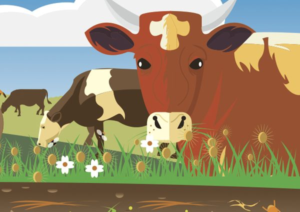 farm-illustration-edit-resize