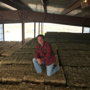 Advancing Sustainable Ranching with Organic Hay