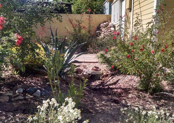 resized - Watershed mgmt backyard image