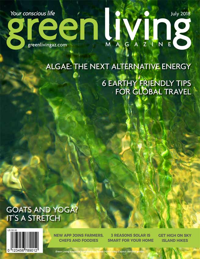 magazine cover of July issue of Green Living Magazine