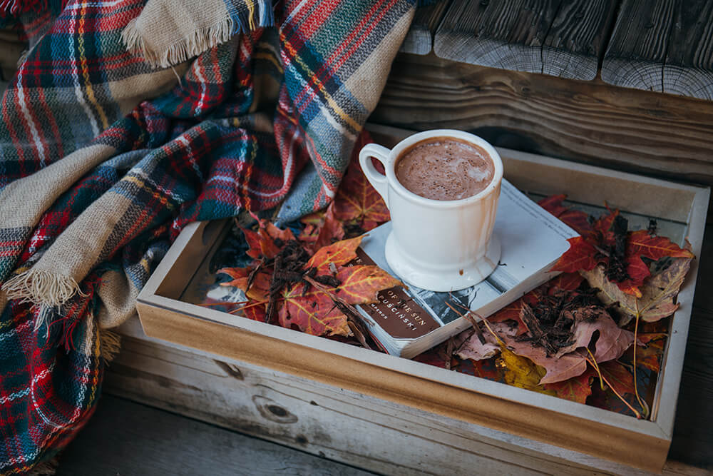 blanket, cup of hot chocolate and a book