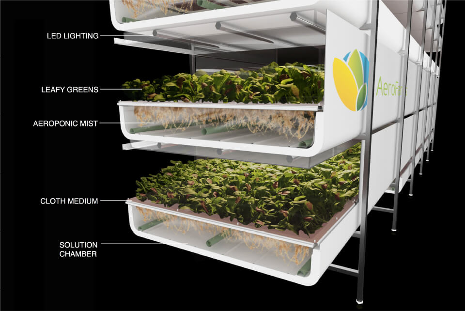 diagram of hydroponics growing system