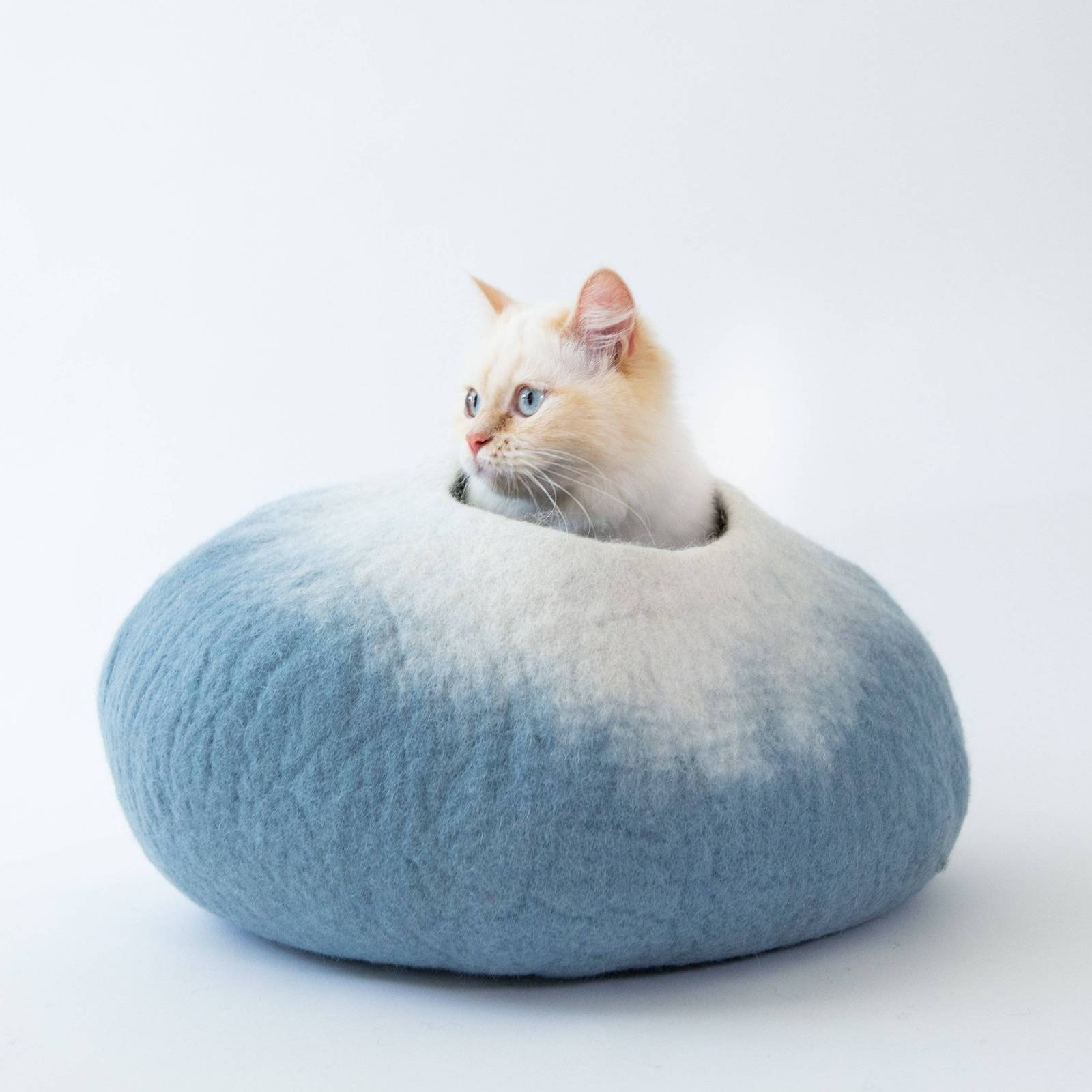 eco-friendly-pet-products