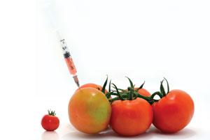 GMO_DEBATE