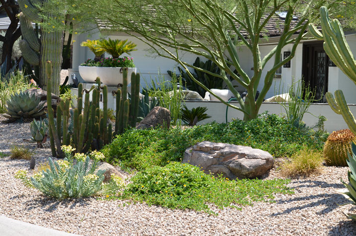 photocredit asset landscaping1