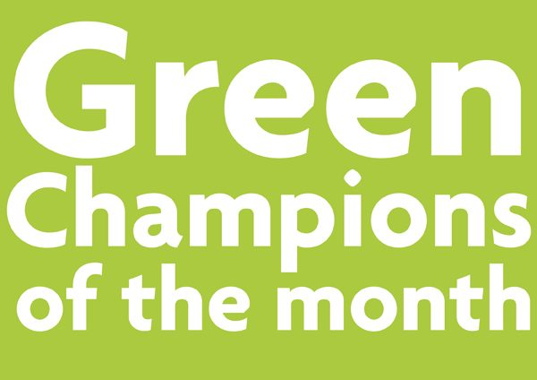 webpost cover green champ